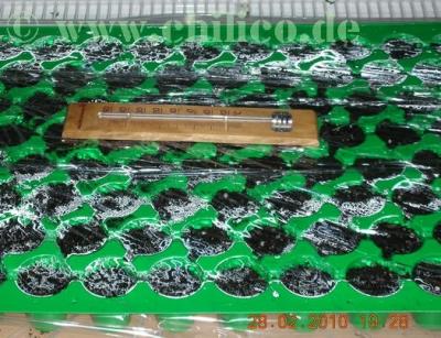 Multitopfplatte mit Folie und Thermometer